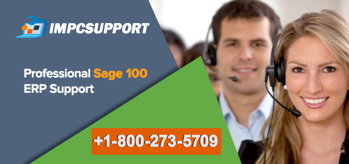 Professional-Sage-100-ERP-Support
